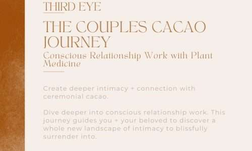 The Couples Cacao Journey : Conscious Relationship Work with Plant Medicine